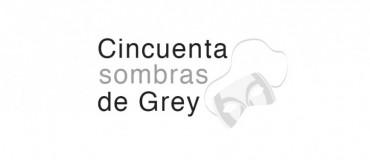 cincuenta sombras grey comprar